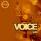 Voice9 1000x1000