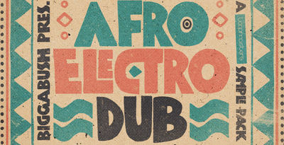 Biggabush afro electro dub910x512