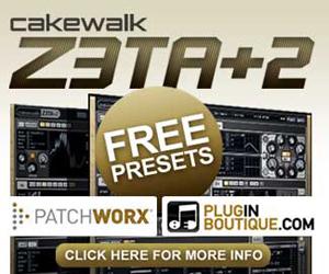 300x250-_zeta-free-presets