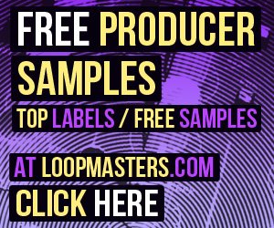 300 x 250 lm free producer samples