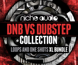 Niche-dnb-vs-dubstep-collection-300-x-250