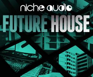 Niche-future-house-300x250