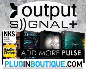 300 x 250 pib output signal