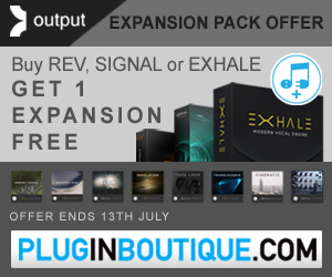 300 x 250 pib output expansion offer