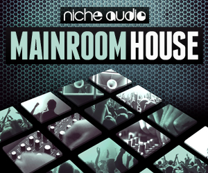 Niche mainroom house 300 x 250