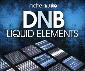 Niche liquid elements 300 x 250