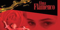 Alma_flamenco_banner_lg