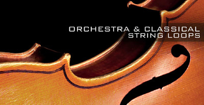Orchestra banner lg
