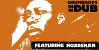 Drumdrops dub 2 pk1 banner
