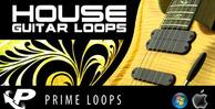 House_guitar_banner_lg