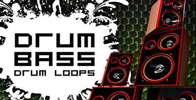 Dnb loops banner lg