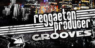 Reggaeton banner lg