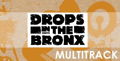 Dropsinbronx2 multi banner