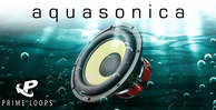 Aquasonica wide 1000x512
