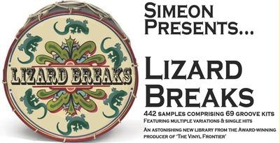 Lizard_breaks_rectangle