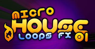 Microhouse 01 512
