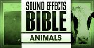 Sound_effects_bible_animals_1000_x_512