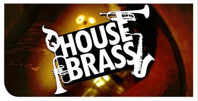 Dgs house brass 01 512