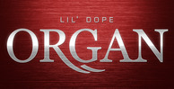 Lil_dope_organ_512