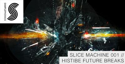 Histibe future breaks banner