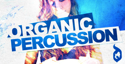 Organic-percussion-512
