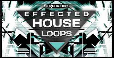 1000x512 effected house loops
