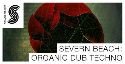 Severn beach organic techno 1000x512
