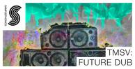 Tmsv_future_dub_1000x512
