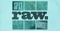 Sp12_raw_1000_x_512