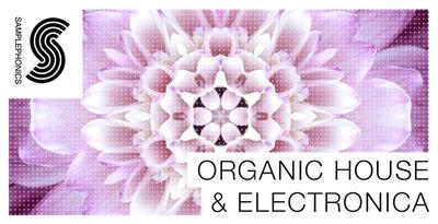 Organic house   electronica1000x512