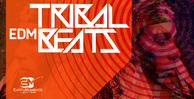 Tribalbeats_1000x512_300dpi