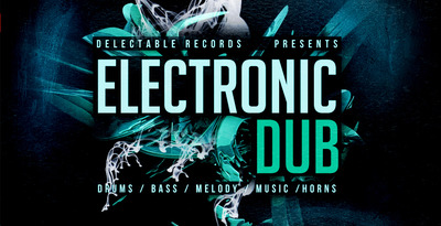 Electronic dub 512
