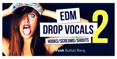 64 edm drop vocals2 1000x512