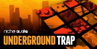 Niche_underground_trap_1000_x_512