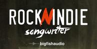 Rocknindiesongwriter512