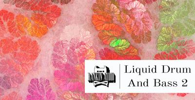 Liquid dnb 2 512x1k