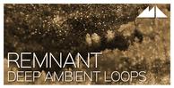 Remnant banner