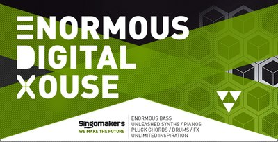 1000x512 enormous digital house