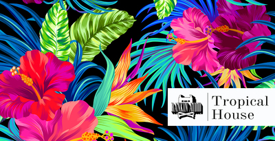 Tropical house 512 1k