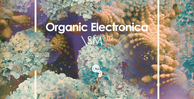 Sm110   organic electronica   banner 1000x512   out