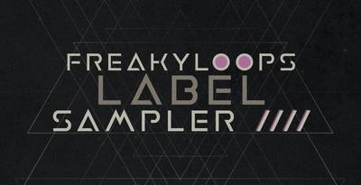 Fl label sampler vol 4 1000x512