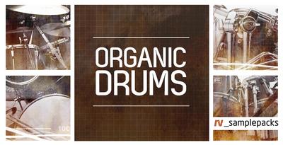 Rv organic drums 1000 x 512