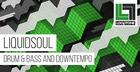 Liquidsoul Drum & Bass and Half tempo