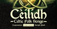 Celtic fiddle   guitar samples rectangle