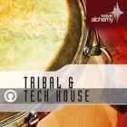 Tribal_tech_800x800_2d