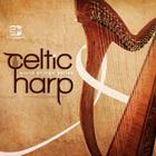 Celtic_harp_1000x1000