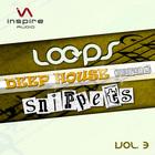 Ia010_loops_snippets_vol3_1000x1000