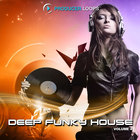 Deep-funky-house-vol-4-1000