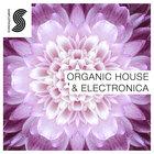Organic-house-_-electronica1000