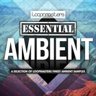 Lm_essential_ambient_1000_x_1000
